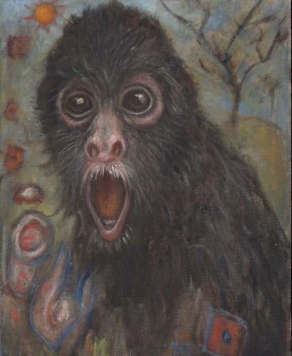 Richard Meyer - Spider Monkey