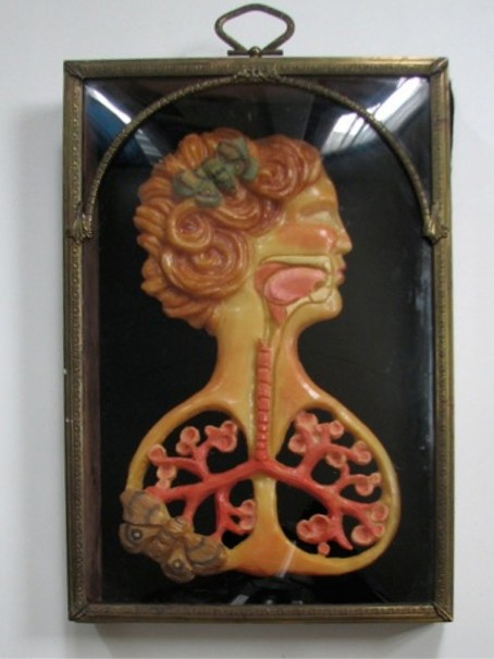 "Heather O' Shaughnessy - LungspringeonBeeswax, oil paint 13x8x1"" in 23x15x1.5"" antique shadowbox. $950"