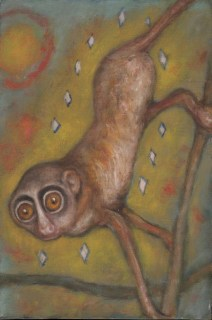Richard Meyer - Gold Lemur