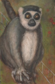 Richard Meyer - Gray Lemur