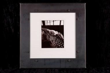 Selenium toned silver gelatin photo print, 8 x 10 in. (in 20 x 20 in. steel frame) $800.00