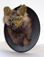 Fox Skin, flora, glass, Wood, mixed media. 14 x 11 9.75 in. $1,100.00