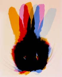 Doug Fogelson - Rabbit