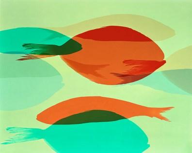 Doug Fogelson - Fish