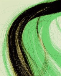 Doug Fogelson - Horsehair, Tail