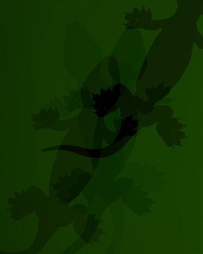 Doug Fogelson - Lizard