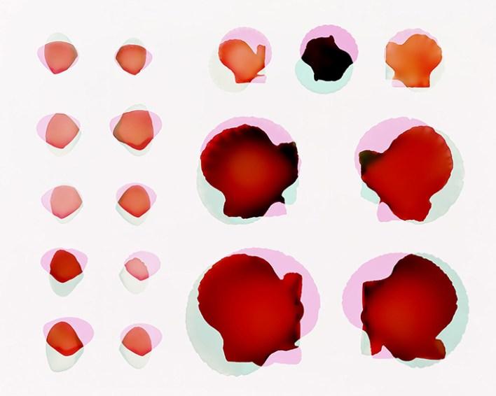 Doug Fogelson - Shells