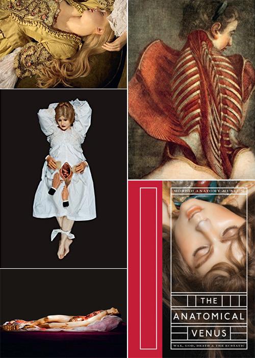 La Luz De Jesus Morbid Anatomy Weekend
