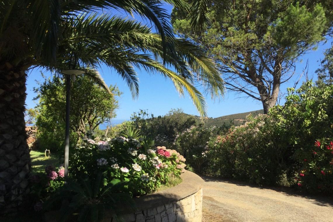 The garden - B&B La Magnolia - Ingurtosu, Sardinia