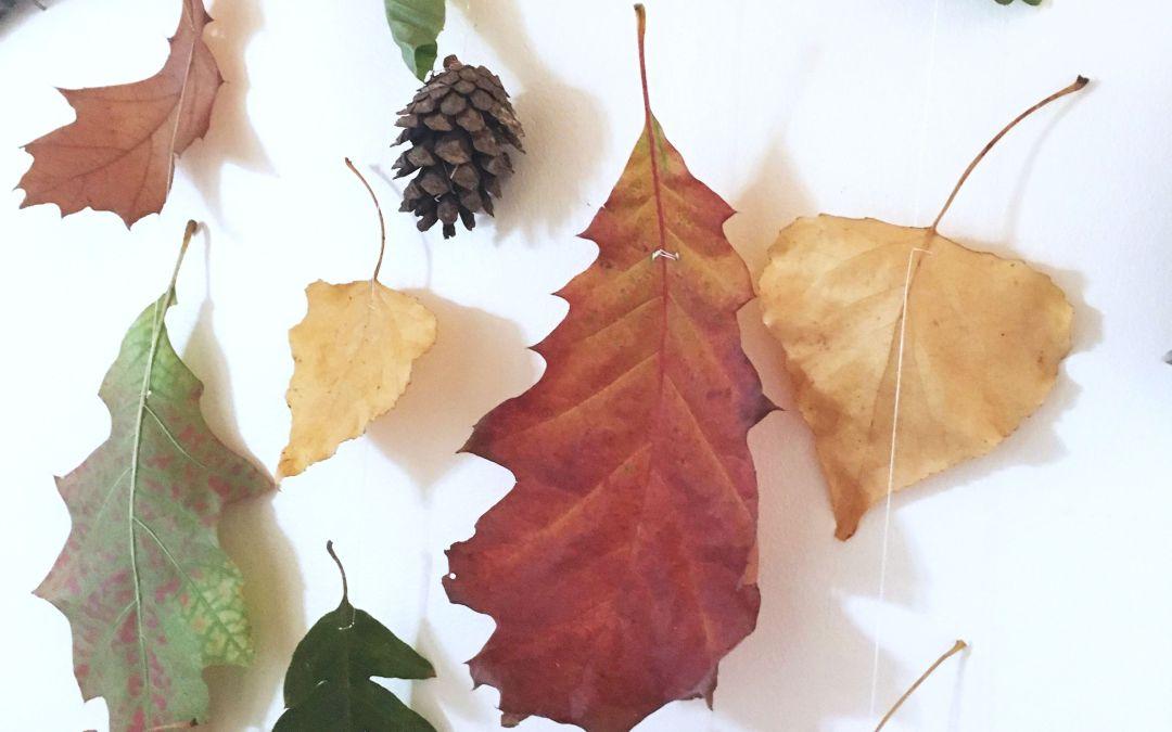 Faire un mobile de feuilles d'automne