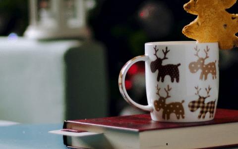 Les 7 cadeaux à offrir aux accros des livres ( Edition 2017 )