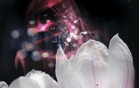 Démon ; Sang-mêlé, The Covenant T1 de Jennifer L. Armentrout