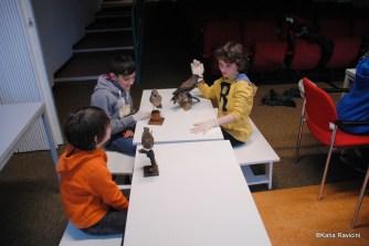 04/12/13 : Fin du premier module. Identification, nettoyage de fossiles et d'animaux naturalisés