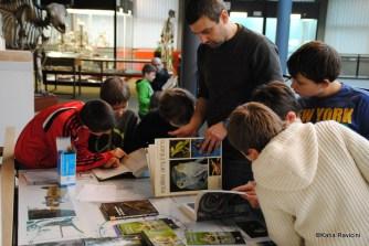 15/01/14 : Herpétologie. (Etude des amphibiens). Cours + atelier.