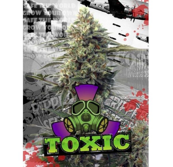 toxic-ripper seeds