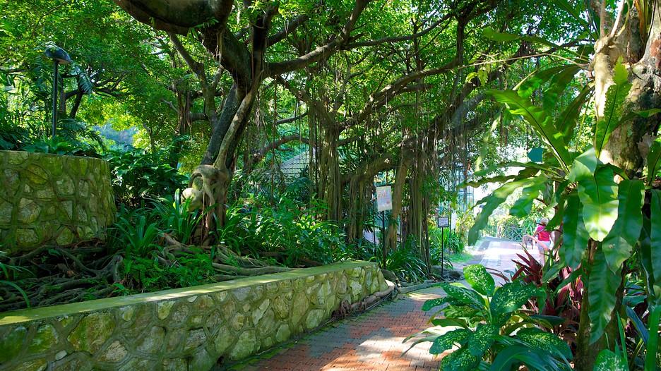 Kuala-Lumpur-Bird-Park-40643