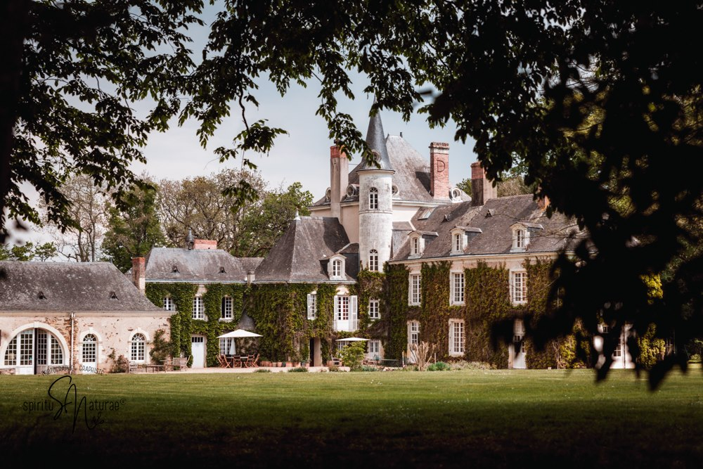 Domaine mariage