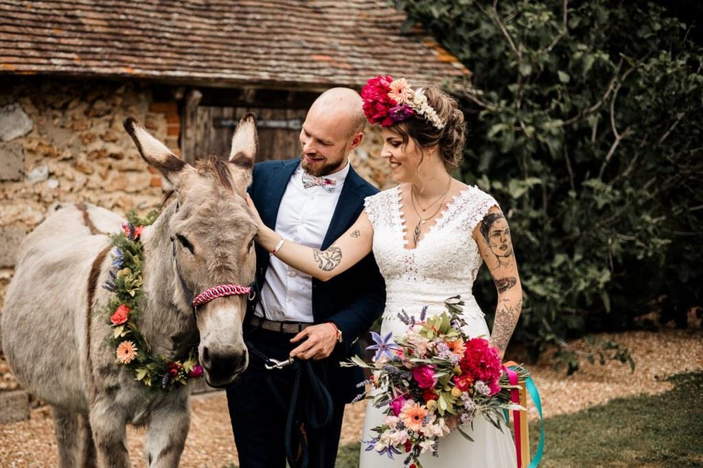 âne mariage