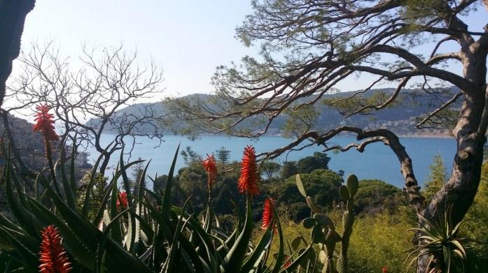 Cap Ferrat - jardin de la villa Ephrussi de Rothschild