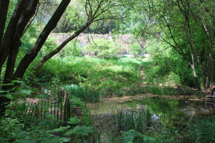 Paris au vert - jardin naturel