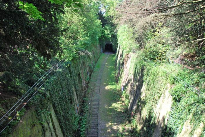 Paris au vert - la petite ceinture au parc Montsouris