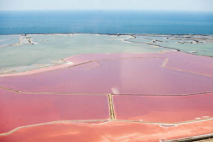 La Marinière en Voyage - marais roses de Camargue