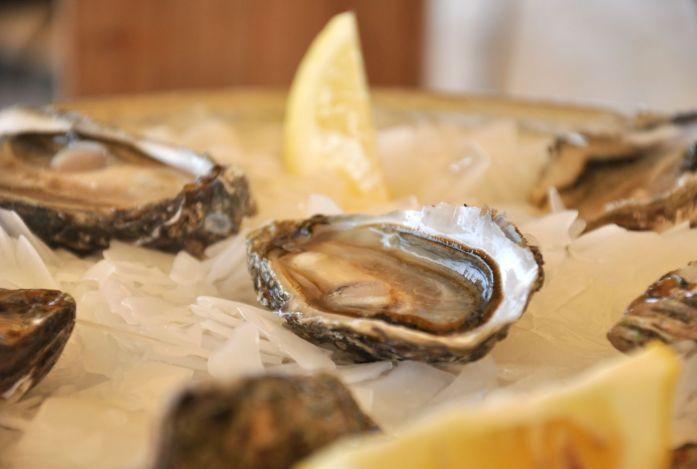 Visiter le Cap Ferret à vélo - dégustation d'huîtres