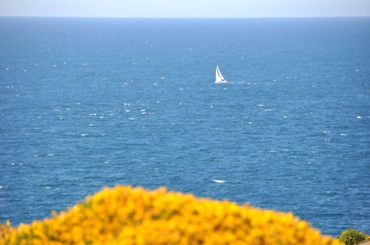 Cap Fréhel - Blog La Marinière en Voyage