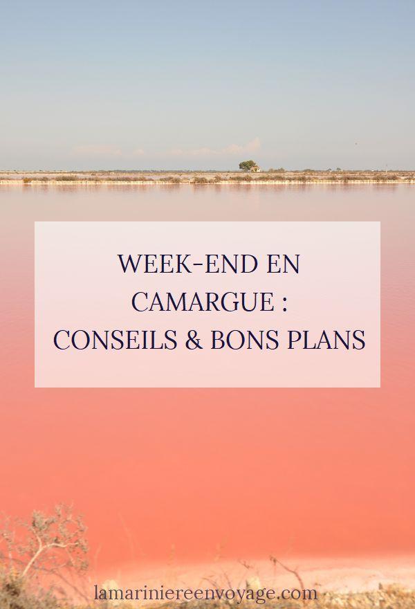 Week-end en Camargue : conseils et bons plans