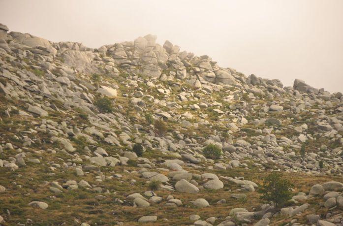 Plateau du Coscione (Corse) - Blog La Marinière en Voyage