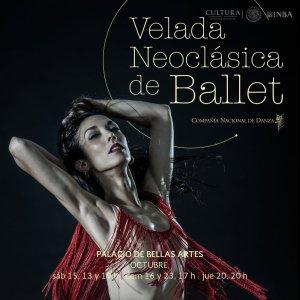 velada-neoclasica-de-ballet