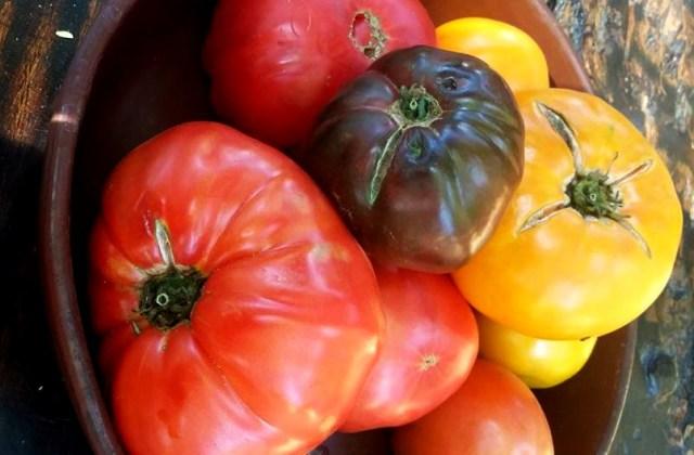 Herencia gastronómica: Oaxaca y sus jitomates criollos