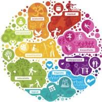 Nous avons 8 formes d'intelligence ? Faites-le Test !
