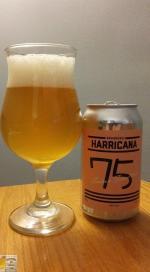 75 Saison Forestière d'Harricana
