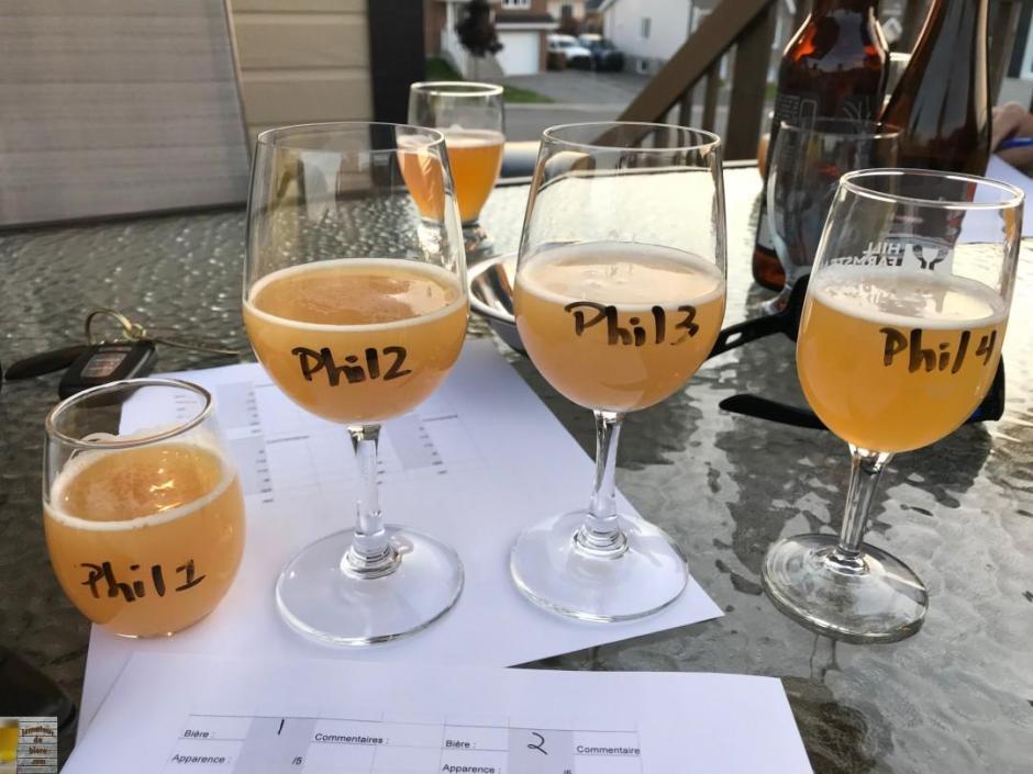 IPA-verres