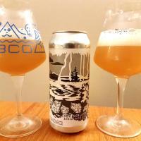 New England India Pale Ale du Castor