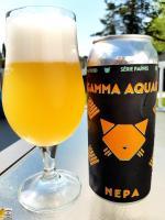 Gamma Aquarii de Noctem