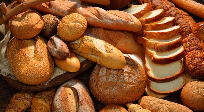 The Bread of Obedience