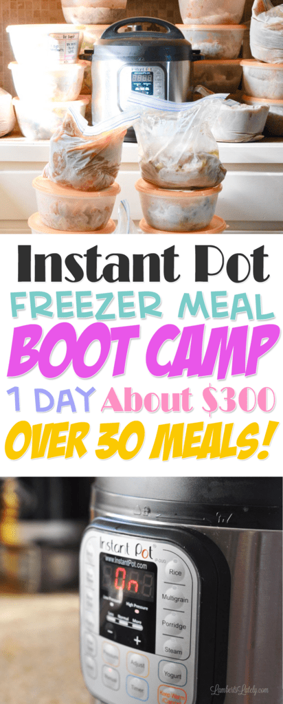 Instant Pot Freezer Meals    Freezer Meal Boot Camp    Electric Pressure Cooker    Easy Recipes    Simple Dinners    Food    Ground Beef    Chicken    Pork    Pressure Cooking    Printable Freezer Meal Labels