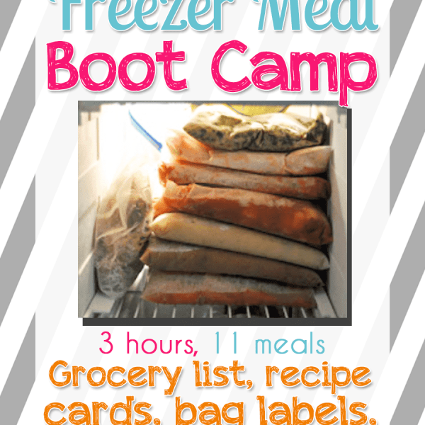 (The New) Slow Cooker Freezer Meal Boot Camp: 11 Meals in 3 Hours