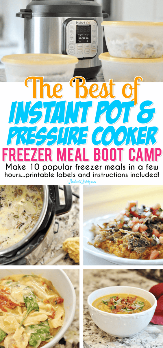 This set of some of the most popular Instant Pot Freezer Meals on the web can be prepped and in the freezer in just hours - easy recipes for busy families! You can use any electric pressure cooker to cook and this set includes printable grocery list and meal labels.