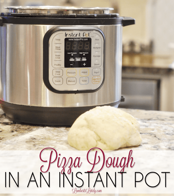 This easy recipe for homemade pizza dough is made in an Instant Pot pressure cooker! It has a quick prep and rise time and is perfect for pizza night with a family.