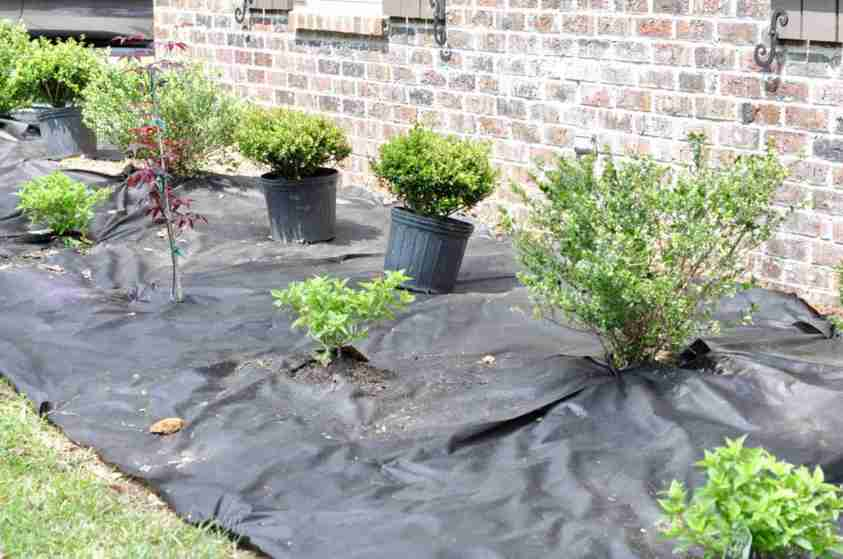 Our Flower Bed Makeover Lamberts Lately