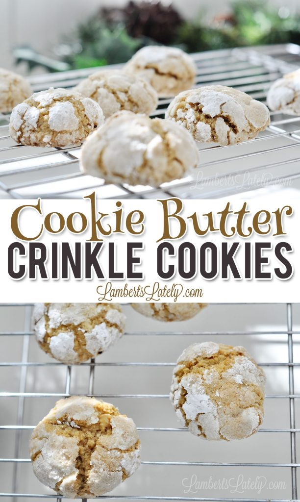 This recipe for Cookie Butter Crinkle Cookies uses the popular Biscoff spread from Trader Joe's to make an easy dessert that's full of rich spice!