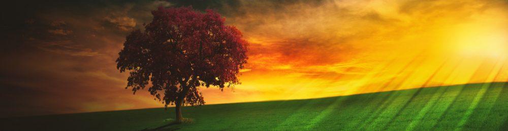 La Méditation est-elle la pratique appropriée à sa recherche ?3 min de lecture