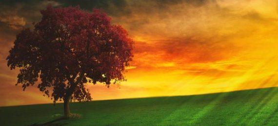 Développement personnel méditation
