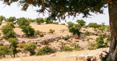 Tigmi paysage-2