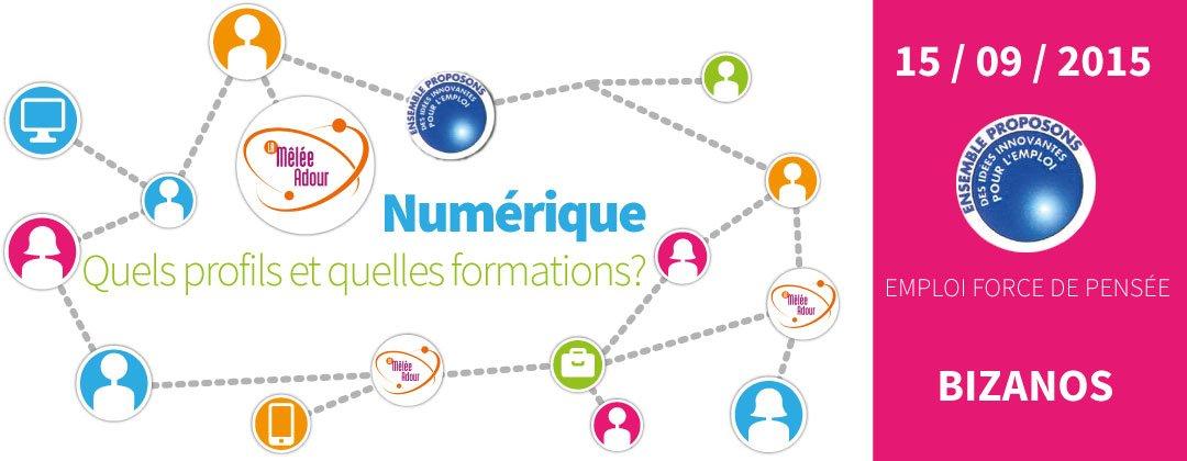 Numérique : quels profils et quelles formations en 2015 ?