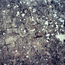 Detalle de las rocas del lugar con floración de líquenes.