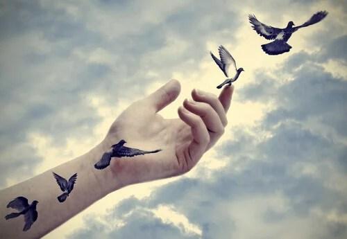 Uccelli che escono dal braccio